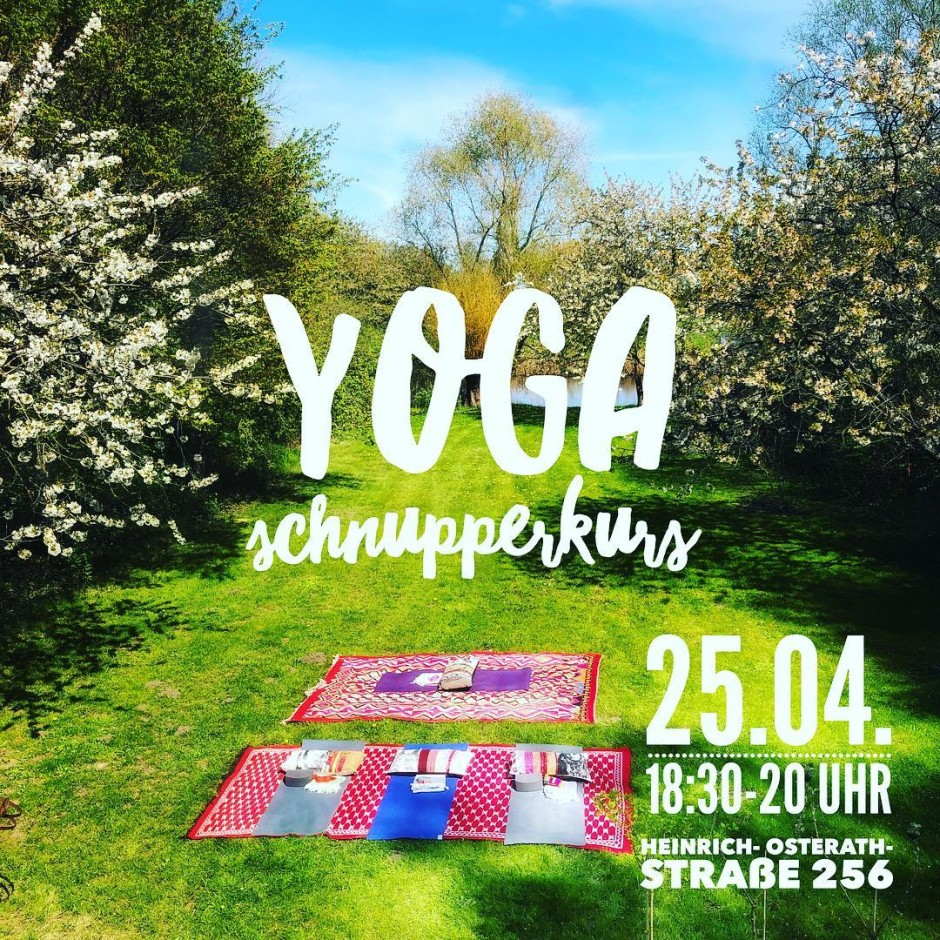 yoga-schnupperkurs